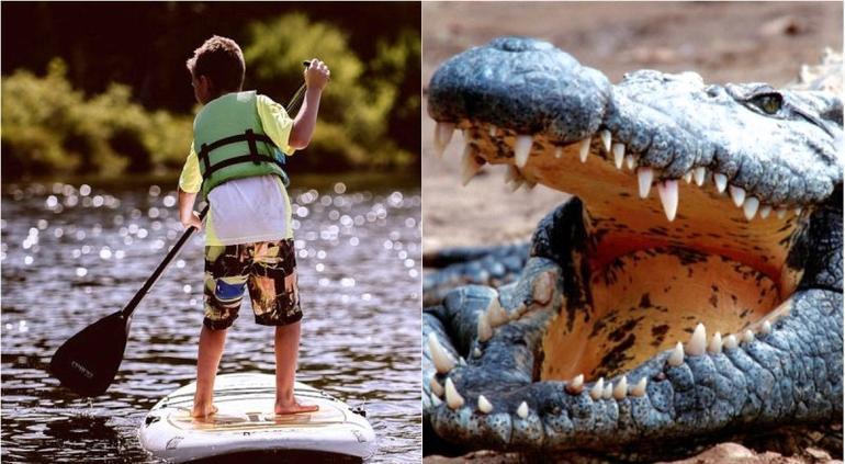 Hombre muerde a cocodrilo para salvar a su hijo