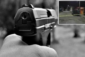 Relacionada pistola.jpg