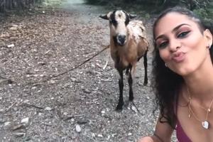 Relacionada selfie-cabra.jpg