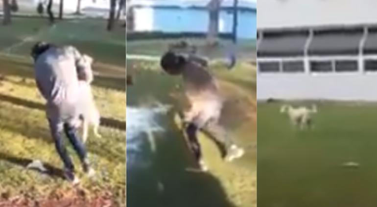 Estudiante de Chapingo es captado maltratando a perro callejero
