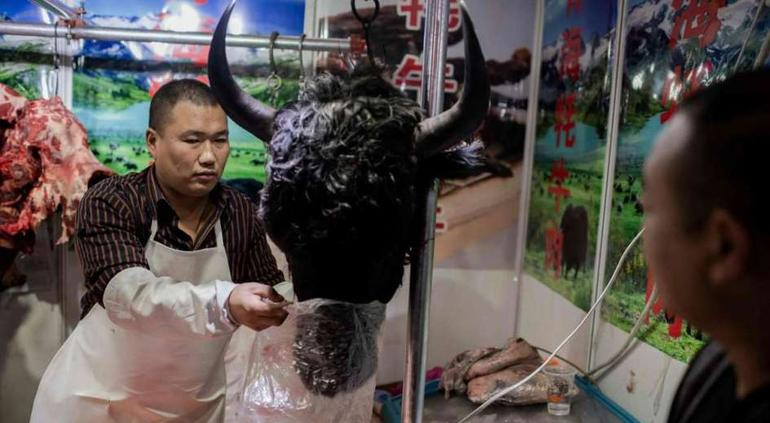 Confirman que 5 chilenos residentes en Wuhan están en cuarentena — Coronavirus