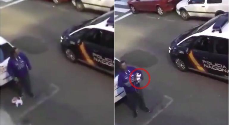 Español sacó a pasear un perro de peluche para eludir el confinamiento