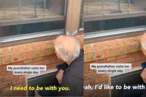 Relacionada abuelos.jpg