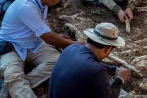 Relacionada paleontologia-paleontologo-e1551662296653.jpg