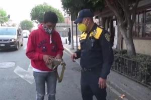 Relacionada policia-cdmx.jpg