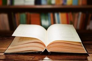Relacionada libro3.jpg